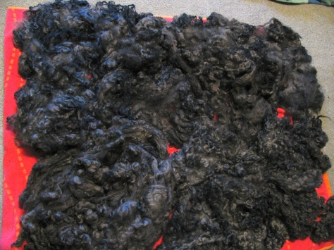 grey fleece dyed with black beans